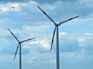 Windkraft_und_Vogel_(c) Luise/pixelio.de